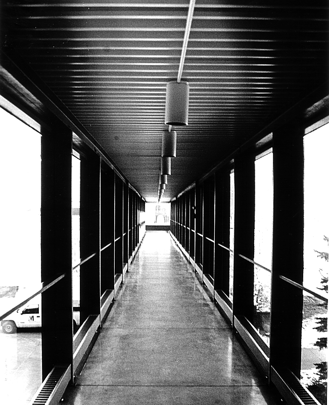 photography_stenzel_1_by_jamesohgoodie