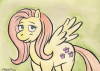 wc-fluttershy-web